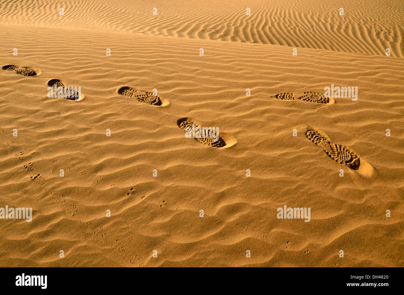 Fuß Schuhabdrücke auf Wüste sand Rajasthan Indien Asien Stockbild