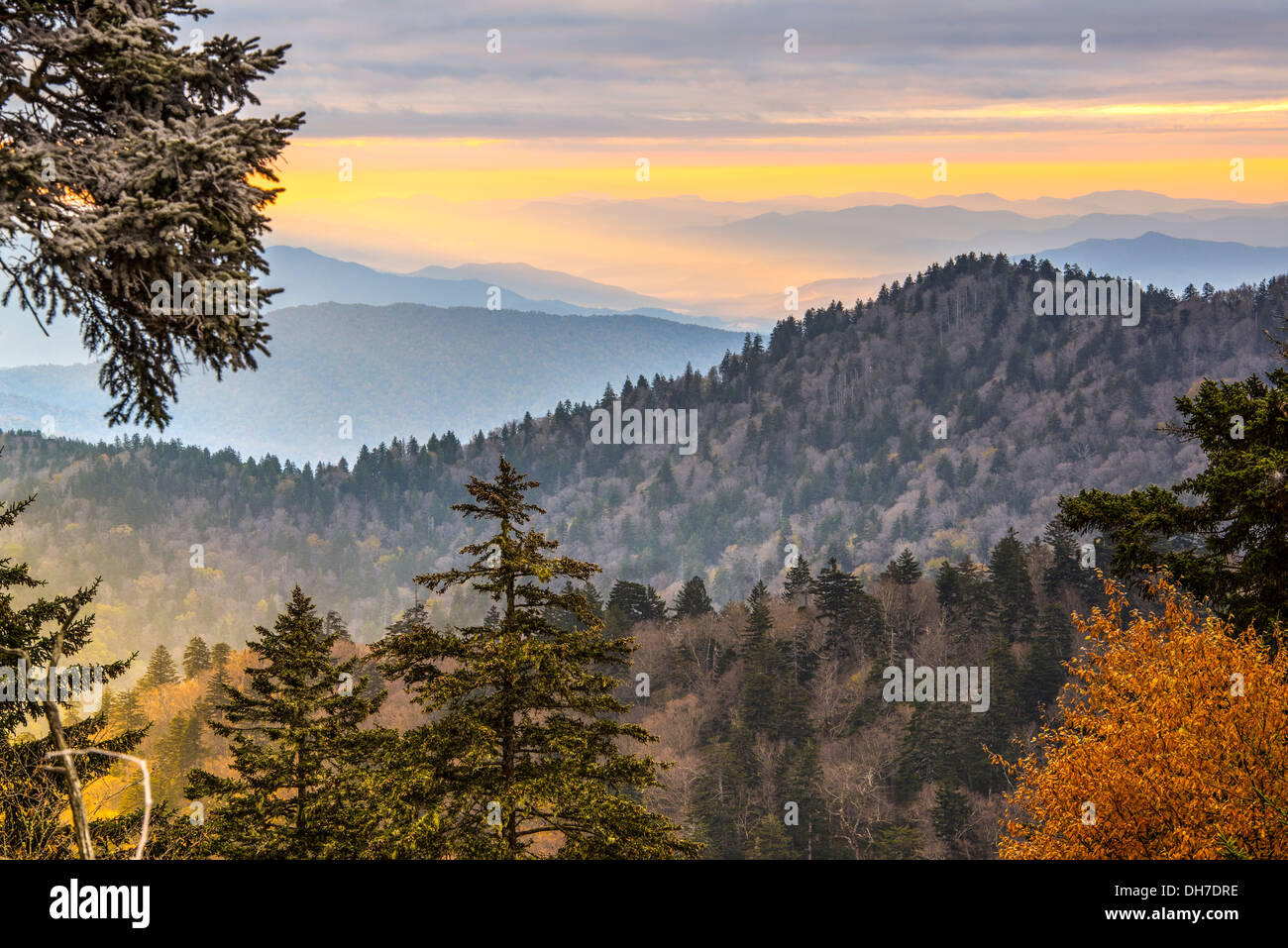 Herbstmorgen in der Smoky Mountains National Park. Stockbild