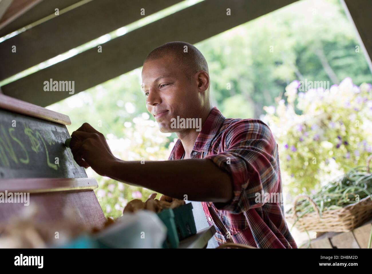 Ein Bio-Obst-Stand. Ein Mann, Kreiden, die Preise an die Tafel. Stockbild