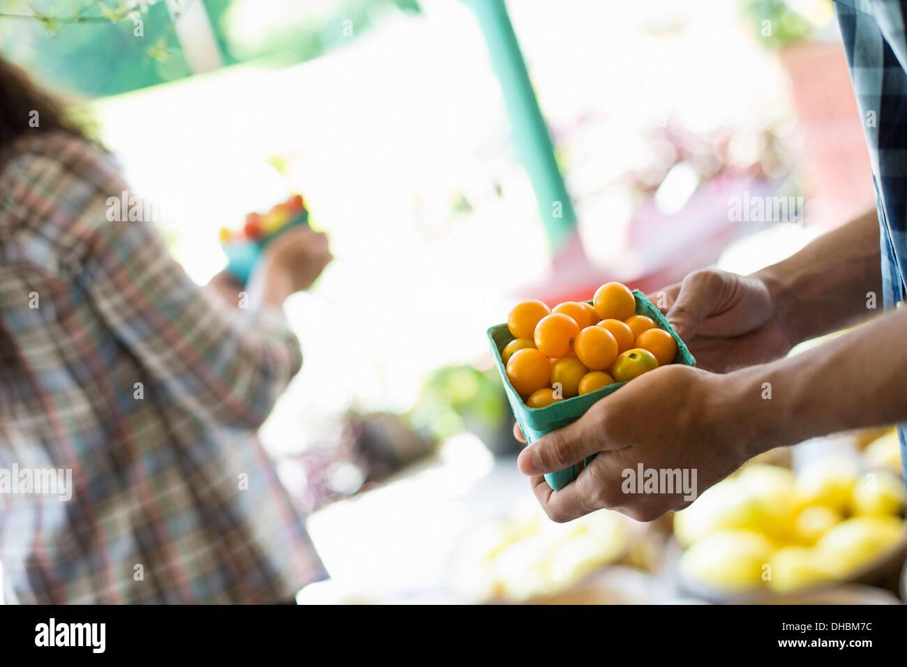 Ein Bauernhof, Anbau und Verkauf von Bio-Gemüse und Obst. Ein Mann und eine Frau zusammen arbeiten. Stockbild