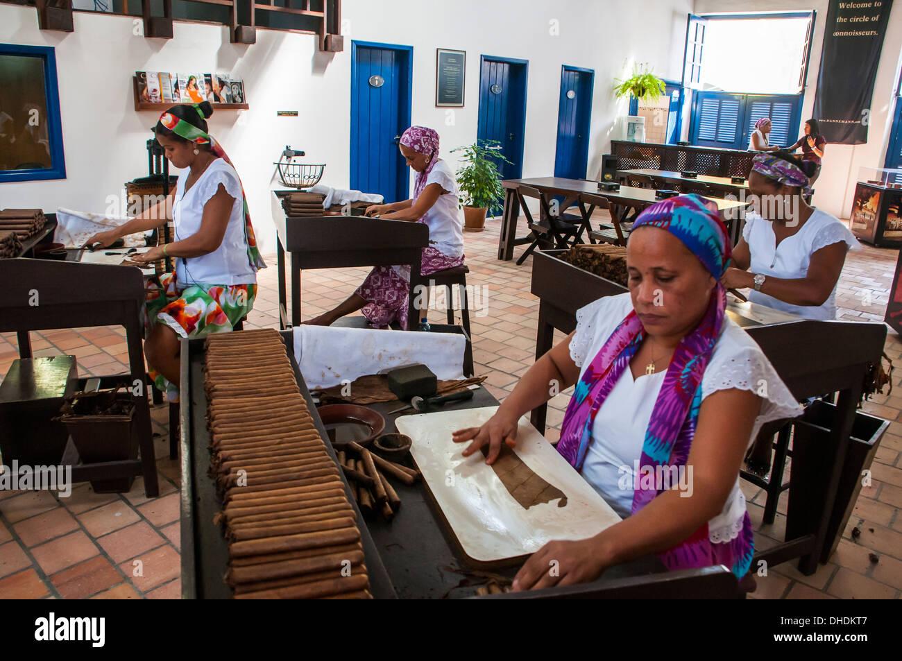 Frauen, die Rollen von Zigarren in der Dannemann-Zigarren-Firma in Cachoeira, Bahia, Brasilien Stockbild