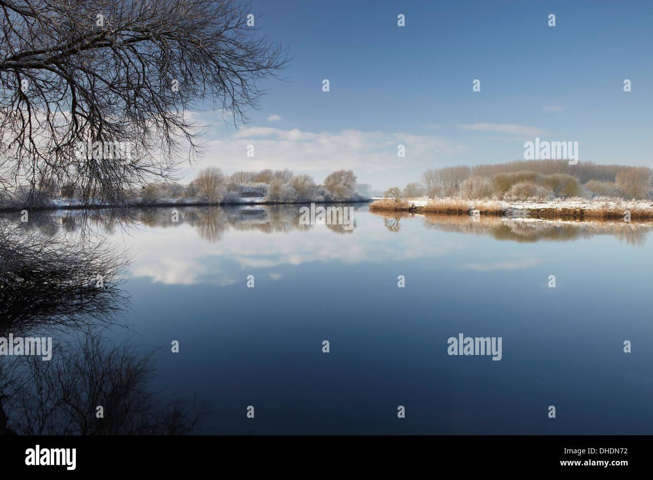 Ein Winter-Szene in den Norfolk Broads neben den Fluß Yare am Surlingham, Norfolk, England, Vereinigtes Königreich, Stockfoto