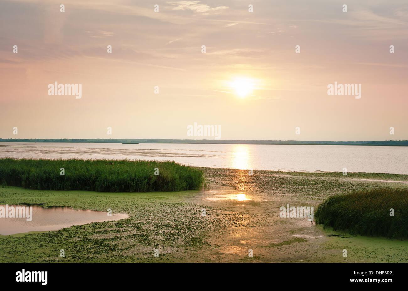 Sonnenaufgang am Theiß-See, Ungarn. Stockbild