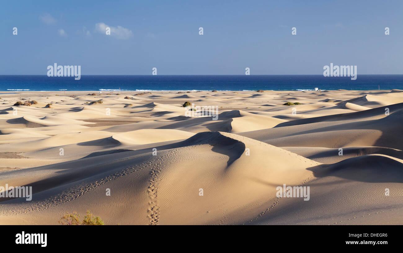Panorama von den Dünen von Maspalomas, Maspalomas, Gran Canaria, Kanarische Inseln, Spanien, Atlantik, Europa Stockbild