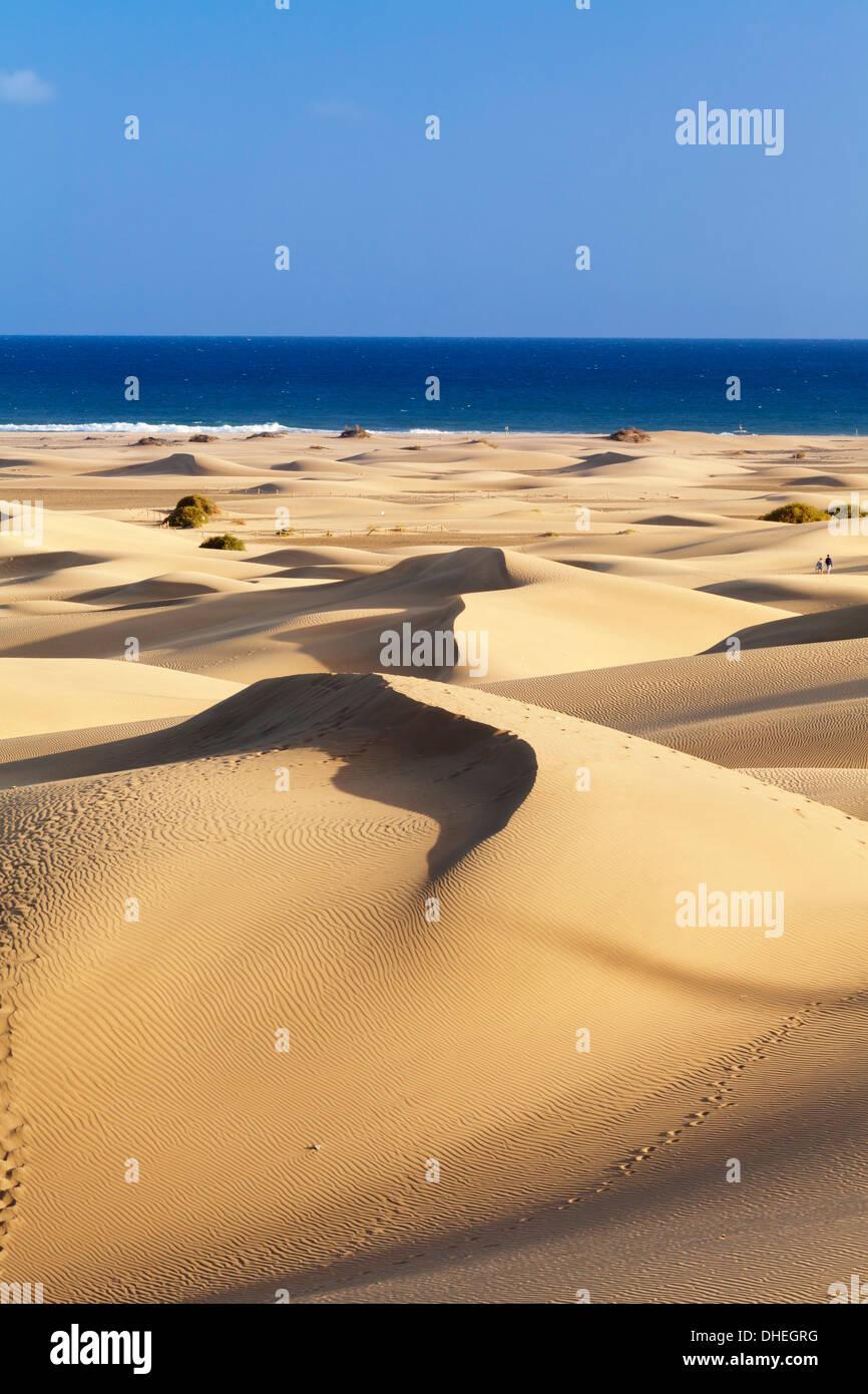 Dünen von Maspalomas, Maspalomas, Gran Canaria, Kanarische Inseln, Spanien, Atlantik, Europa Stockbild