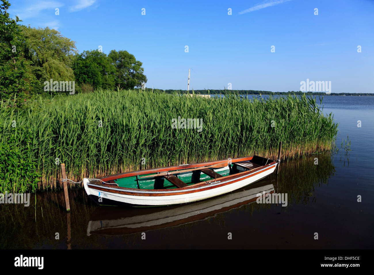 Boot am Dreibergen, Ammerland Region, Zwischenahner Meer, Niedersachsen, Deutschland Stockbild