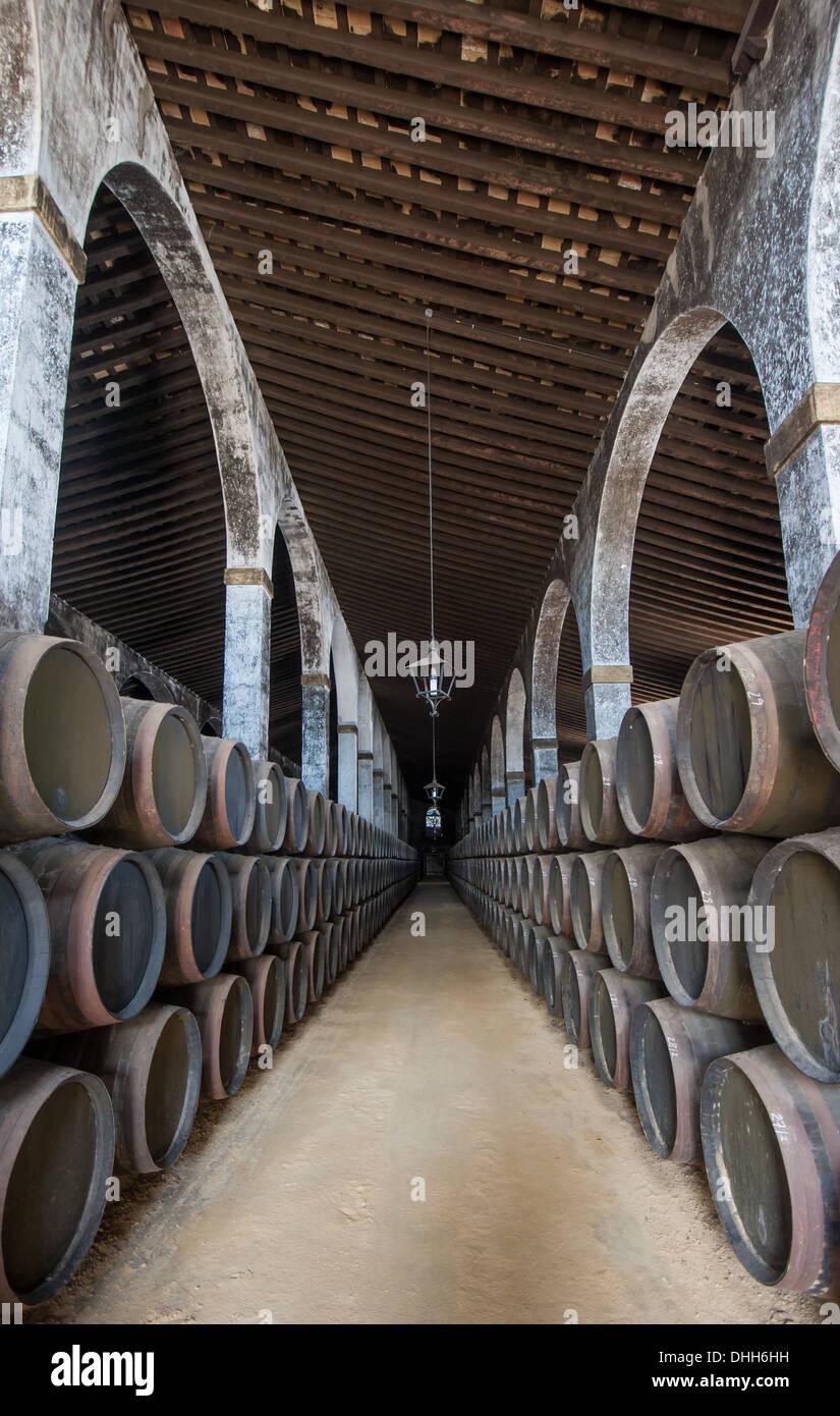 Sherry-Fässer in Jerez Bodega, Spanien Stockbild