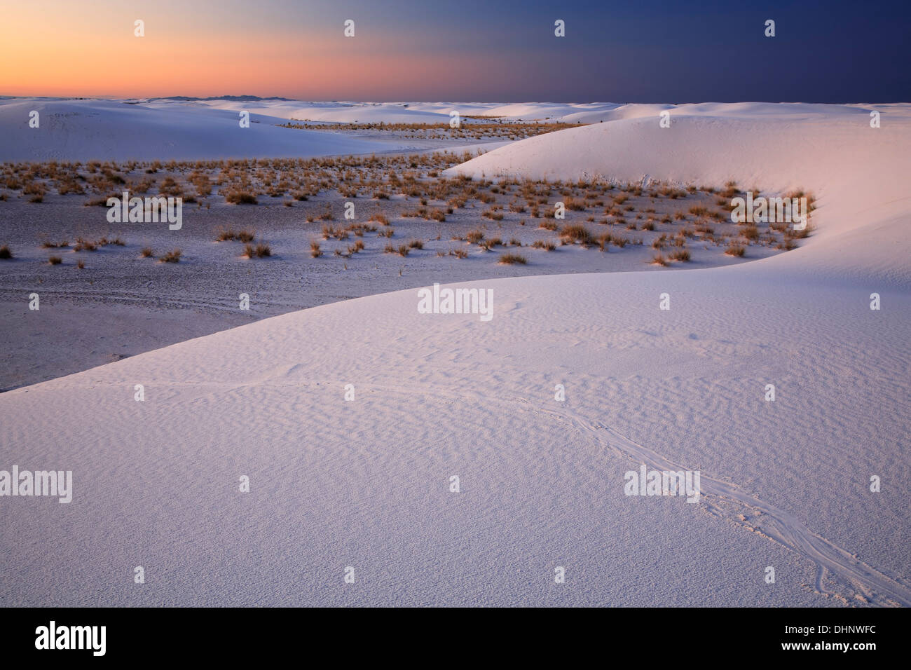 Dünen und Sträucher bei Sonnenaufgang, White Sands National Monument, Alamogordo, New Mexiko USA Stockbild