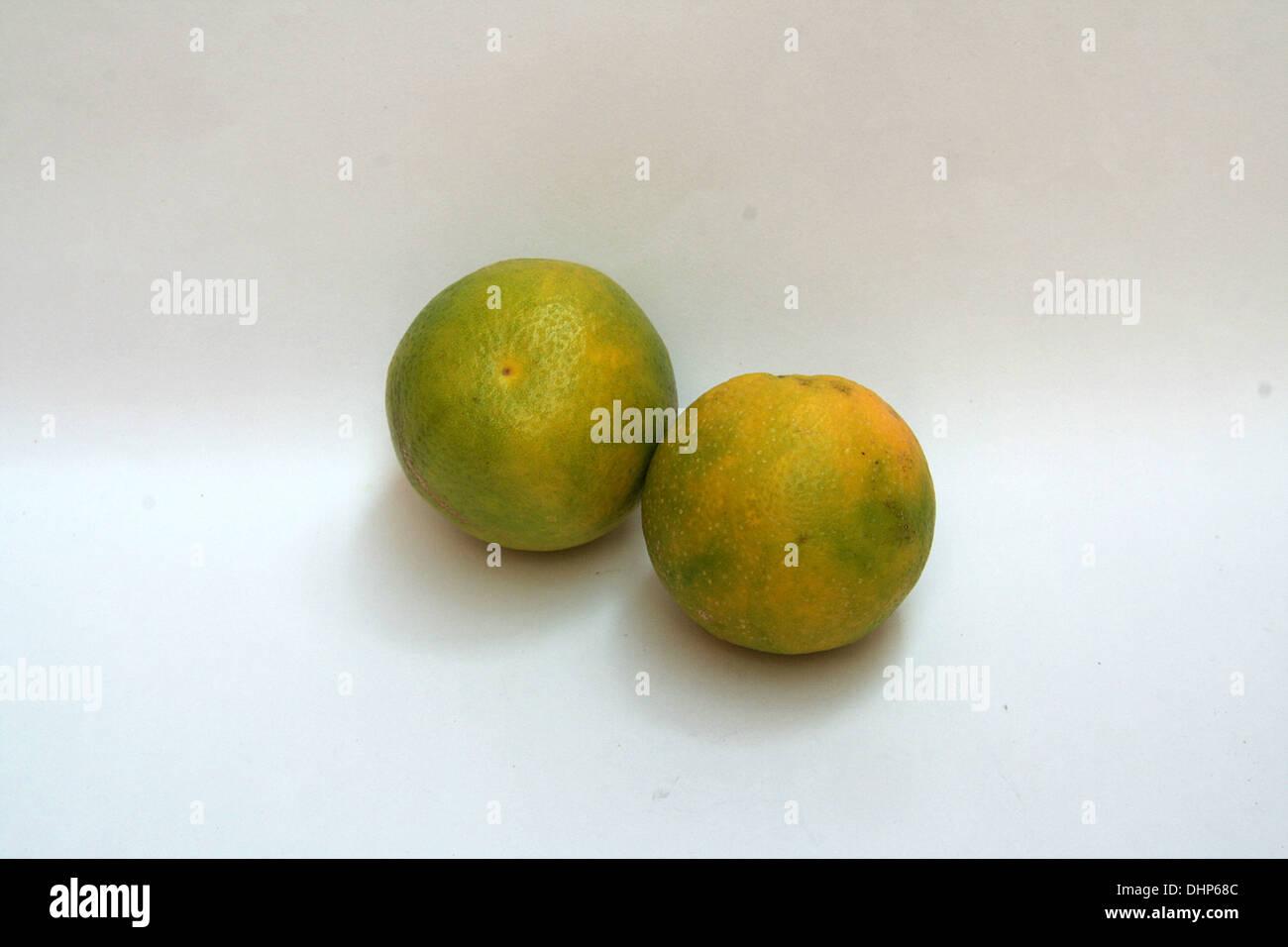Gelblich grünen süßen Zitrusfrüchten isoliert auf weißem Hintergrund Stockbild