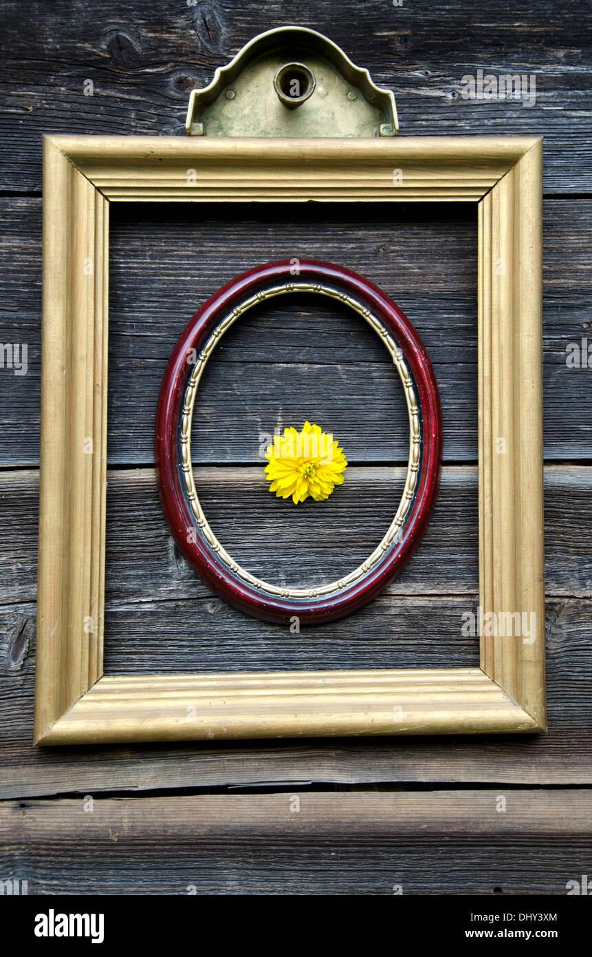 Oval Frame Antique Stockfotos & Oval Frame Antique Bilder - Seite 2 ...