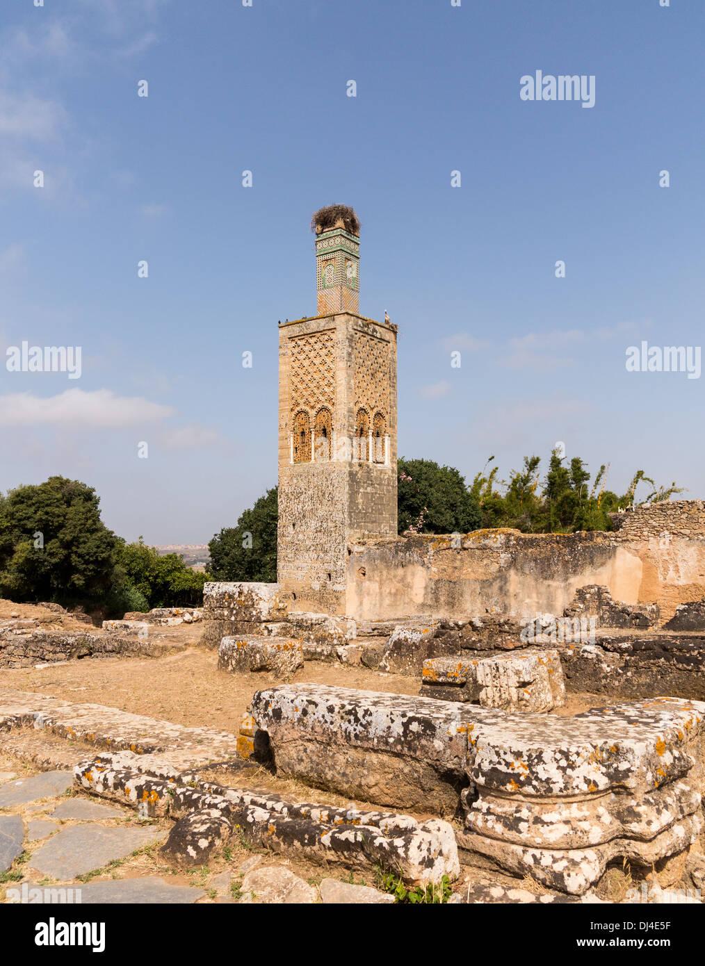 Chellah / Sala Colonia in der Nähe von Rabat in Marokko - eine Ruinenstadt der antiken römischen Arabisch / Nekropole mit Störche Nester Stockbild
