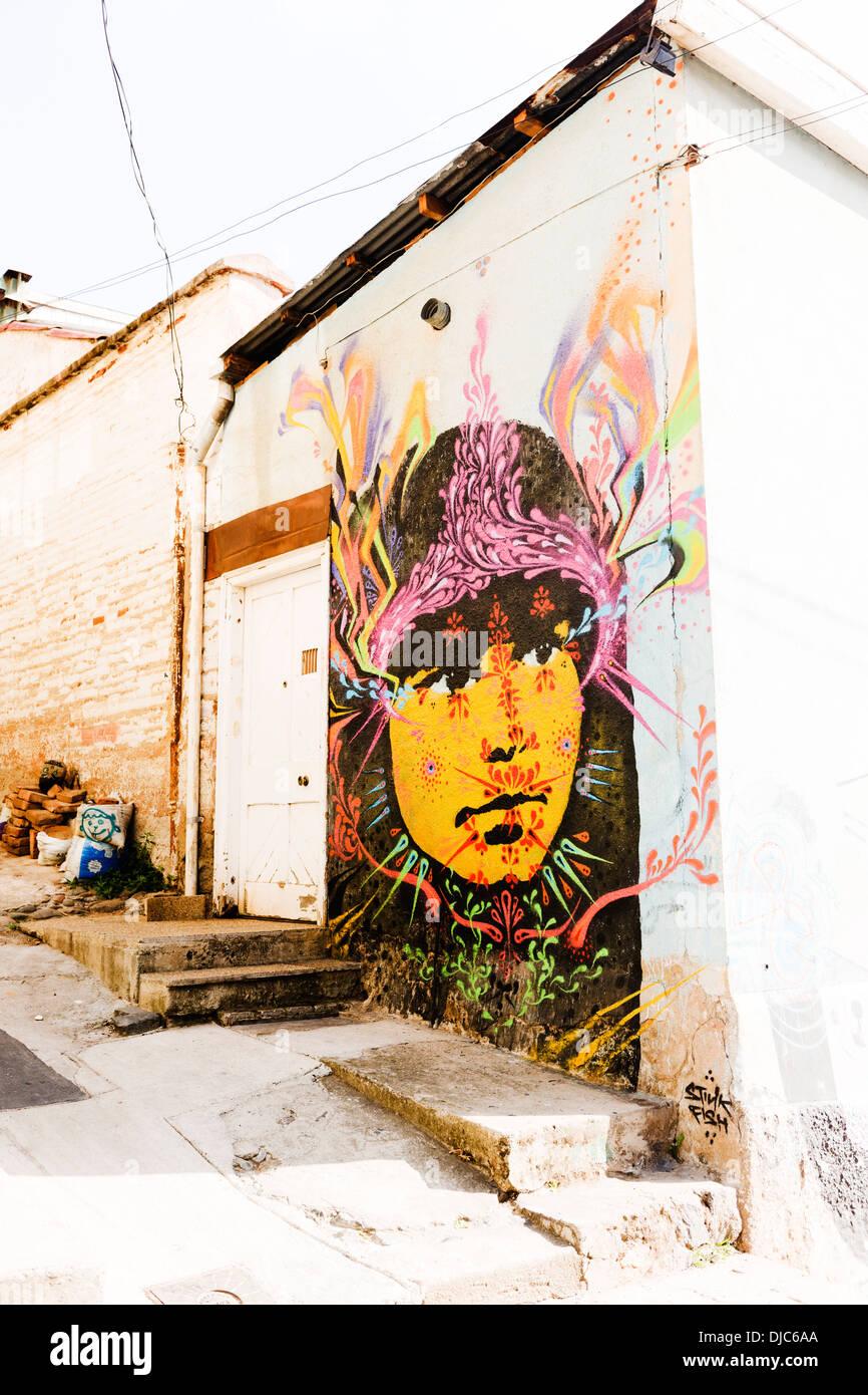 Street Art Portrait von stinken Fische in Valparaiso, Chile. Stockbild