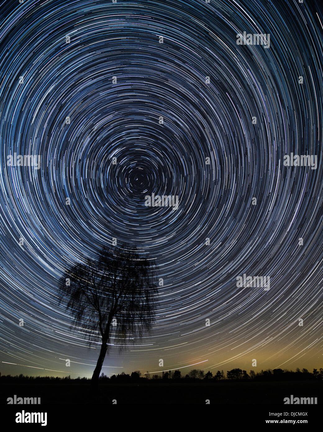 Sternenhimmel mit Bäumen, Niedersachsen, Deutschland ? montage Stockbild