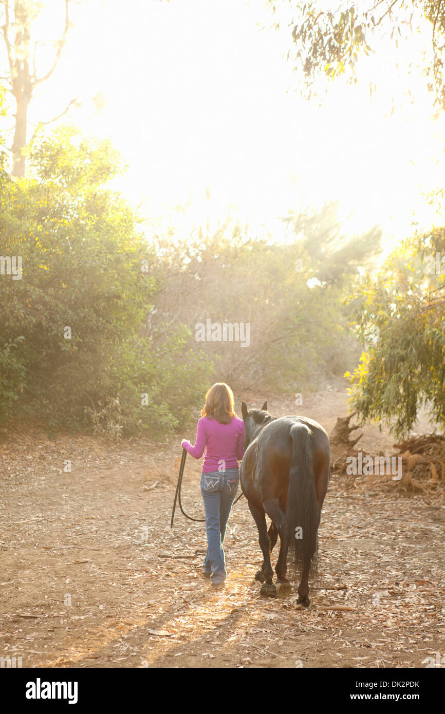 Brünette Frau in lila Pullover führt braunes Pferd auf sonnigen Weg bei Sonnenuntergang Stockbild