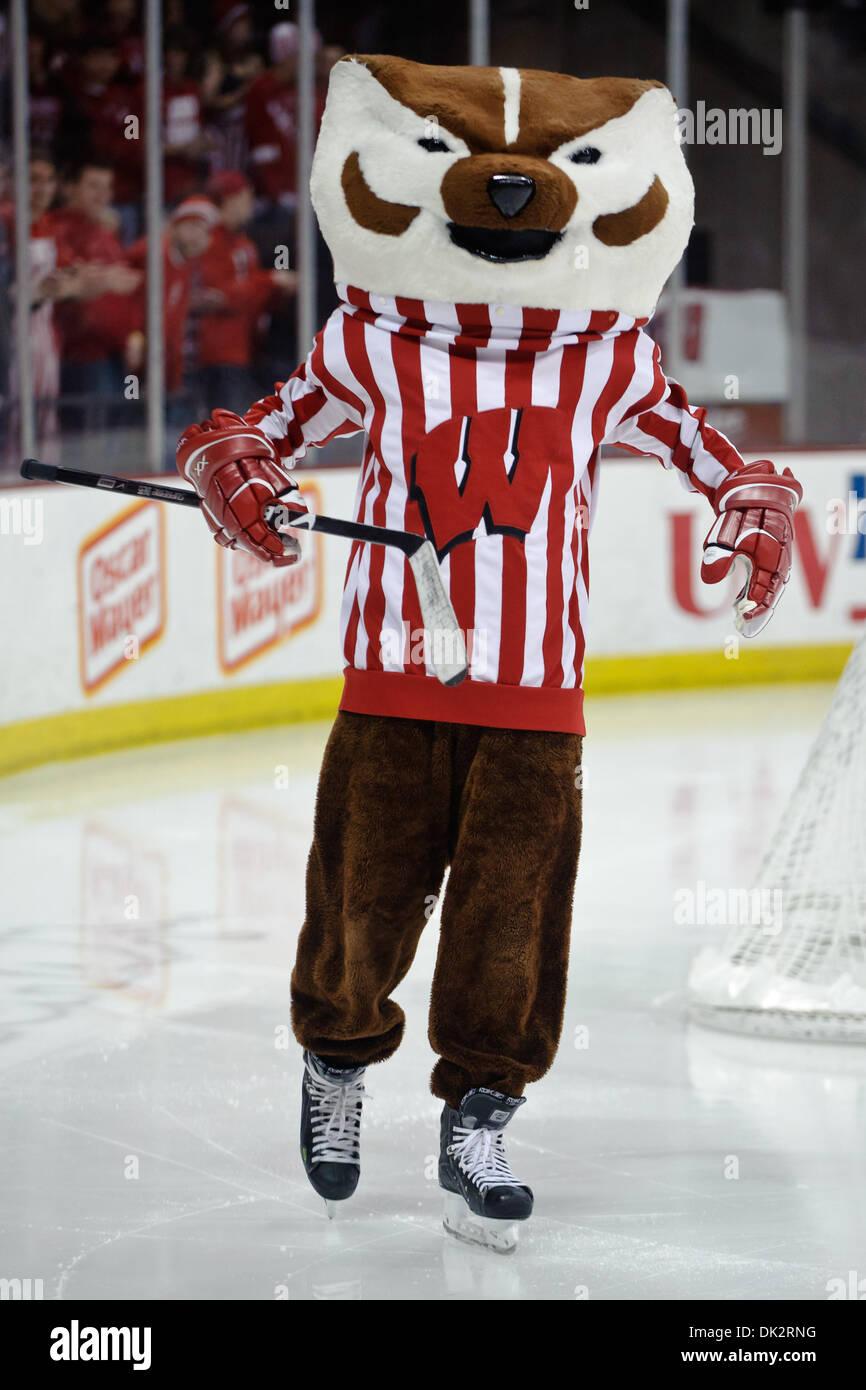 18 Februar 2011 Unterhält Bucky Badger Madison Wisconsin Usa