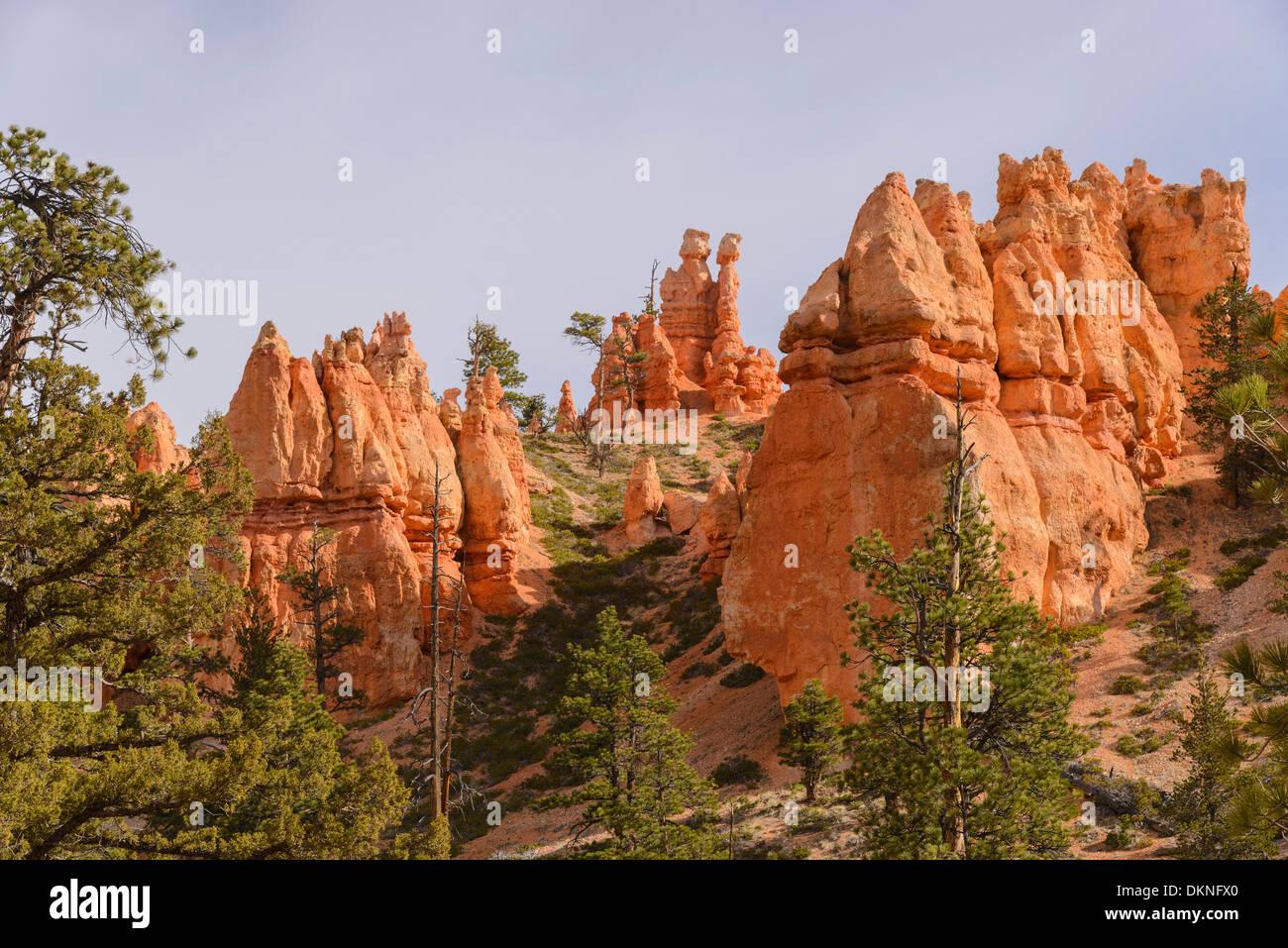 Bryce Canyon Navajo Loop Trail, Bryce-Canyon-Nationalpark, Utah, USA Stockfoto