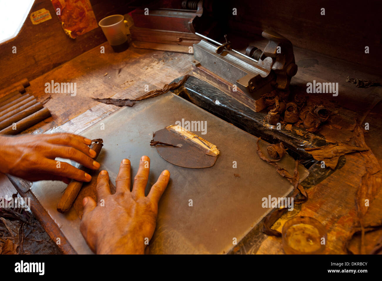 Dominikanische Republik, Produktion, Handwerk, Zigarren, Zigarre, Karibik, Santo Domingo, Tabak, Hände, Roll, Stockbild