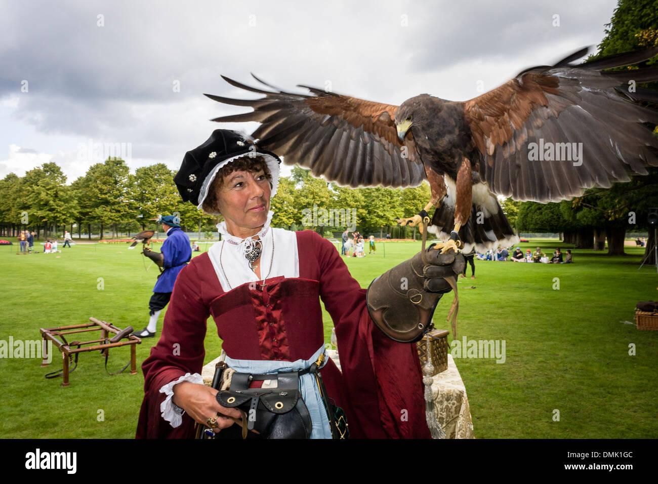 Harris Hawk auf eine Falknerei Display mit Schauspielern im Zeitraum Tudor Kostüm an der Hampton Court Palace, London, England, GB, UK. Stockbild