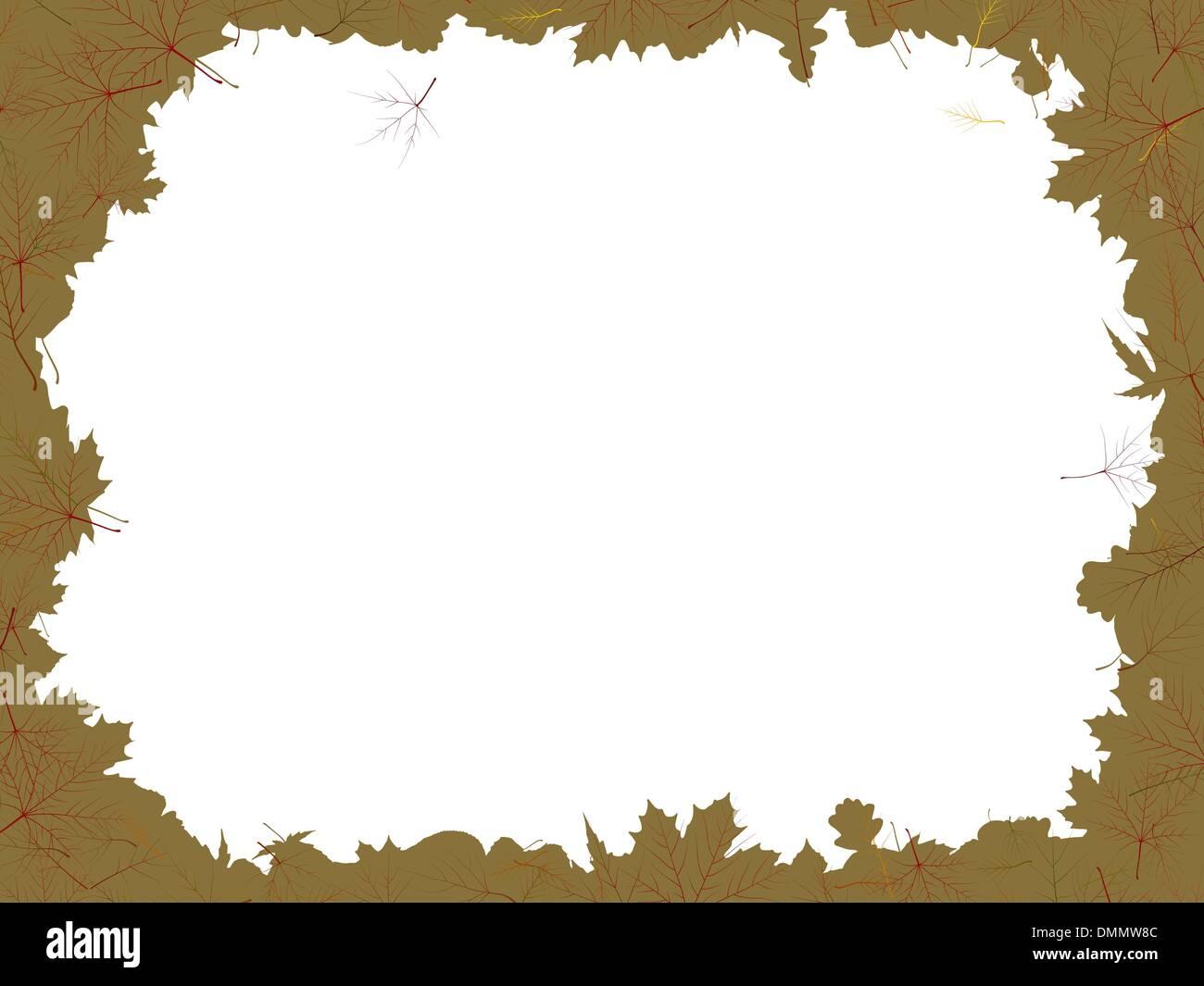 Ahorn und Eiche Blätter Rahmen Vektor Abbildung - Bild: 64383100 - Alamy