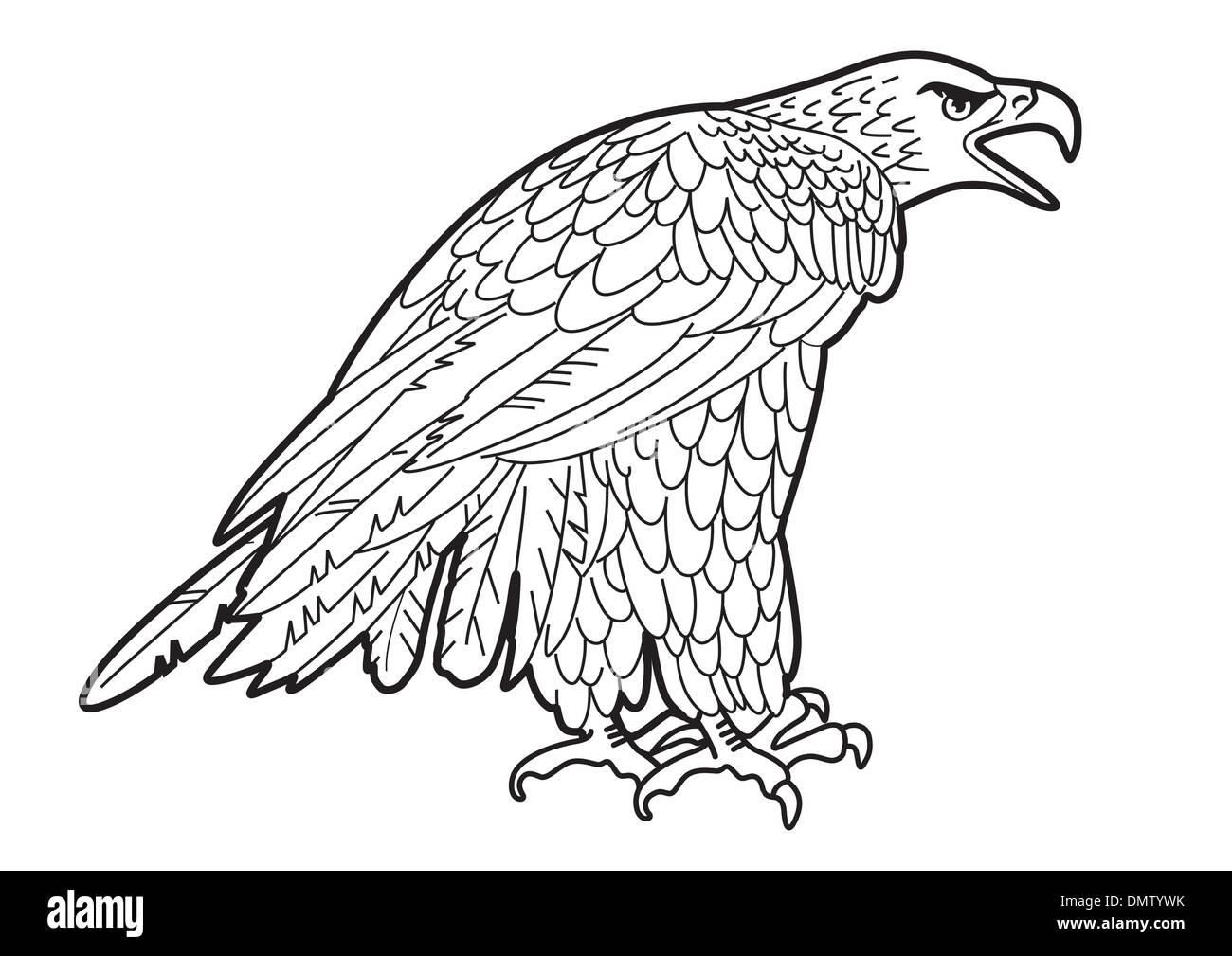 Adler-Grafiken Stockbild