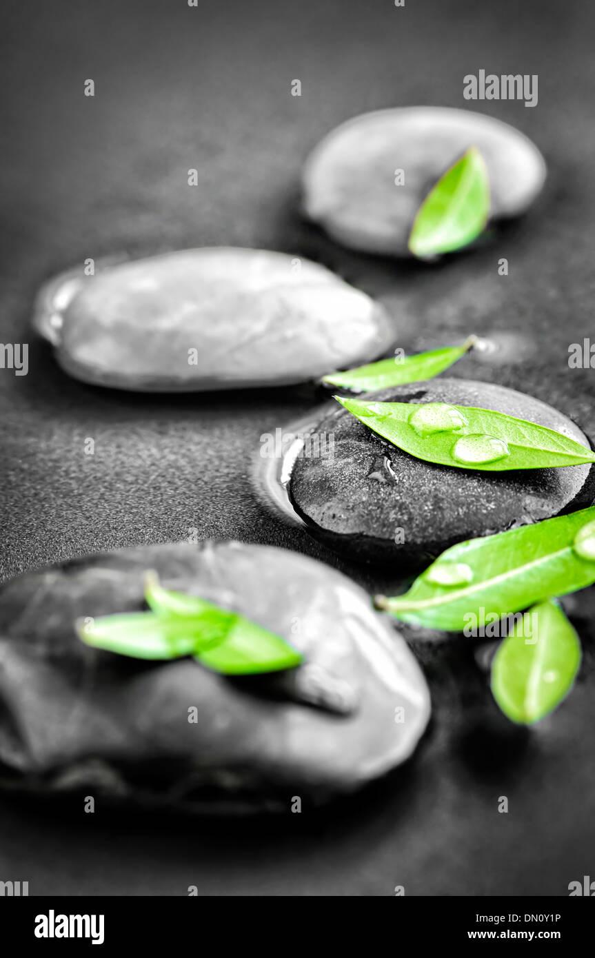 Schwarz Weiß Zen Steinen Untergetaucht Im Wasser Mit Farbe