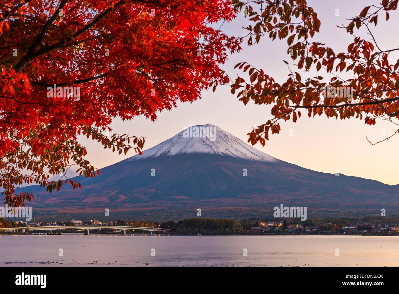Mt. Fuji mit Herbst Laub in Japan. Stockbild