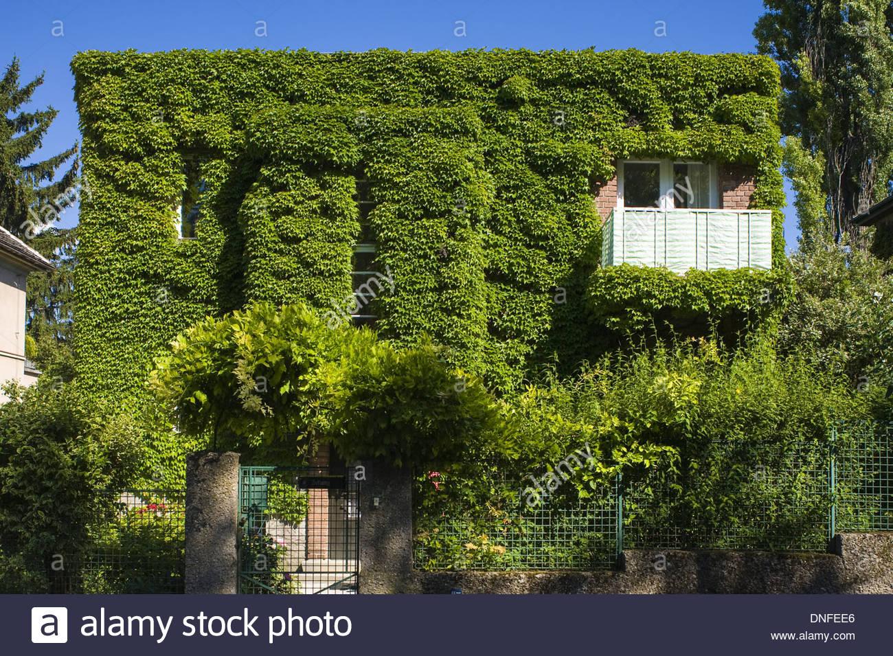 Wien architektur fassadenbegr nung wien architektur gr ne fassade stockfoto bild 64879534 - Grune architektur ...
