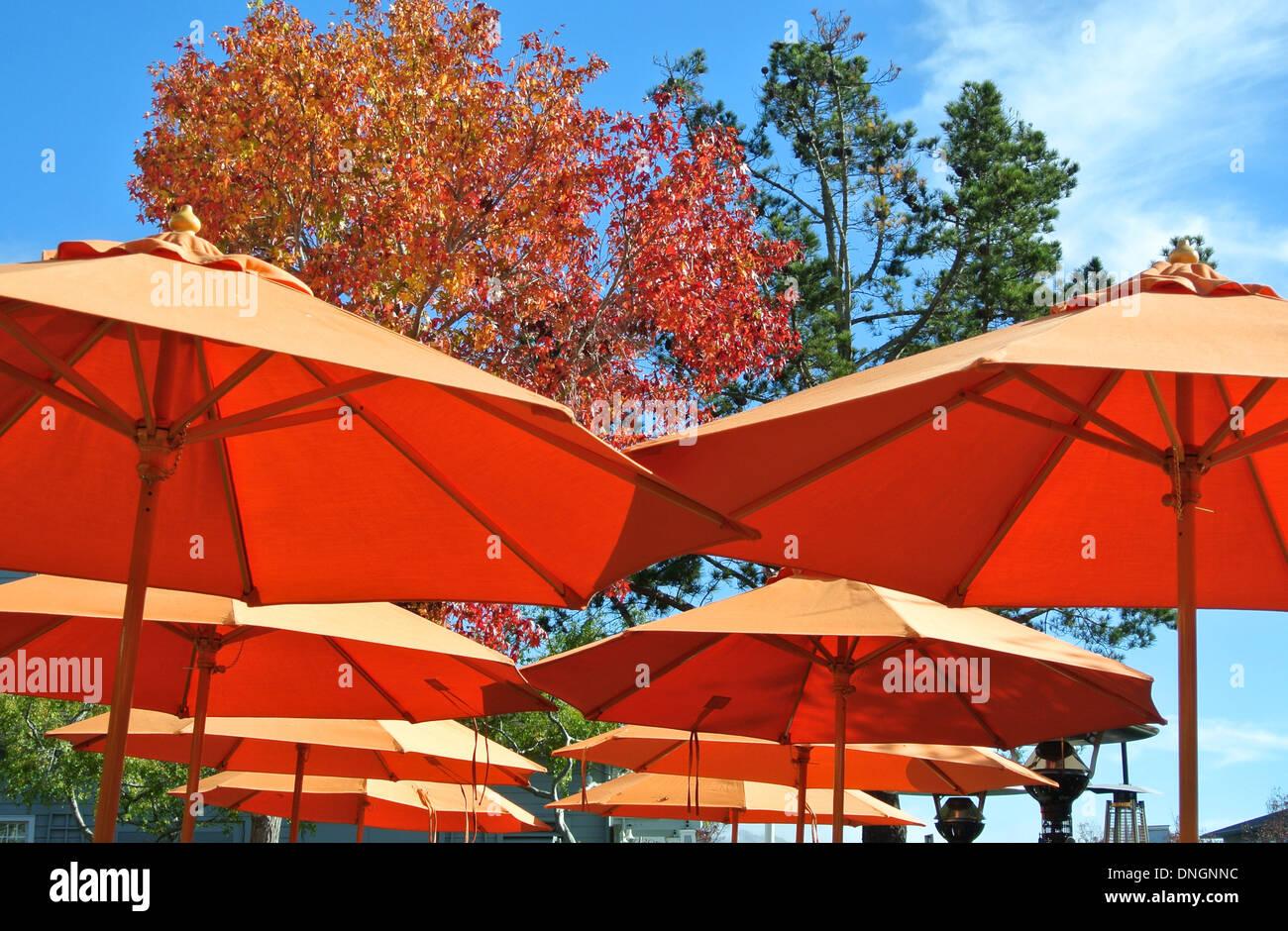 Orange Sonnenschirme im Restaurant im Herbst in Tiburon, Kalifornien Stockbild