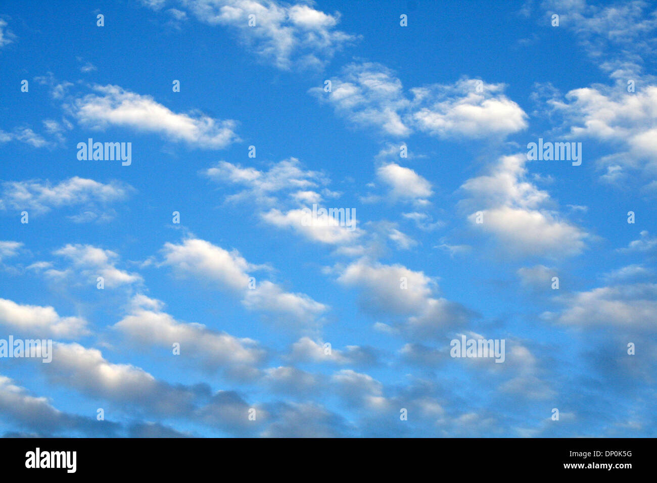Konapictures Stockfotos & Konapictures Bilder - Alamy