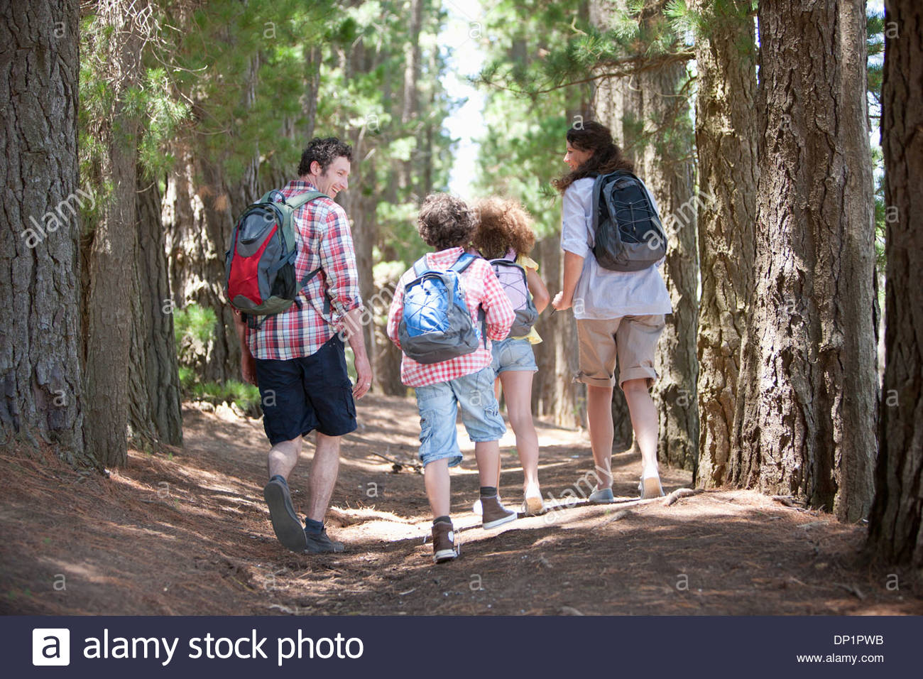 Familie, Wandern im Wald Stockbild