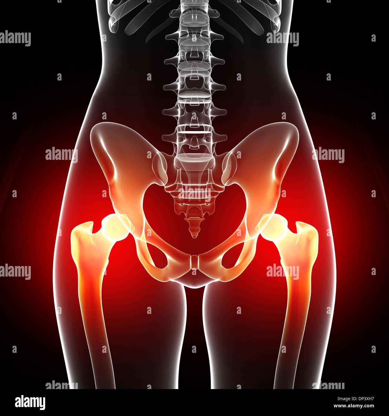 Pelvic Pain Stockfotos & Pelvic Pain Bilder - Alamy