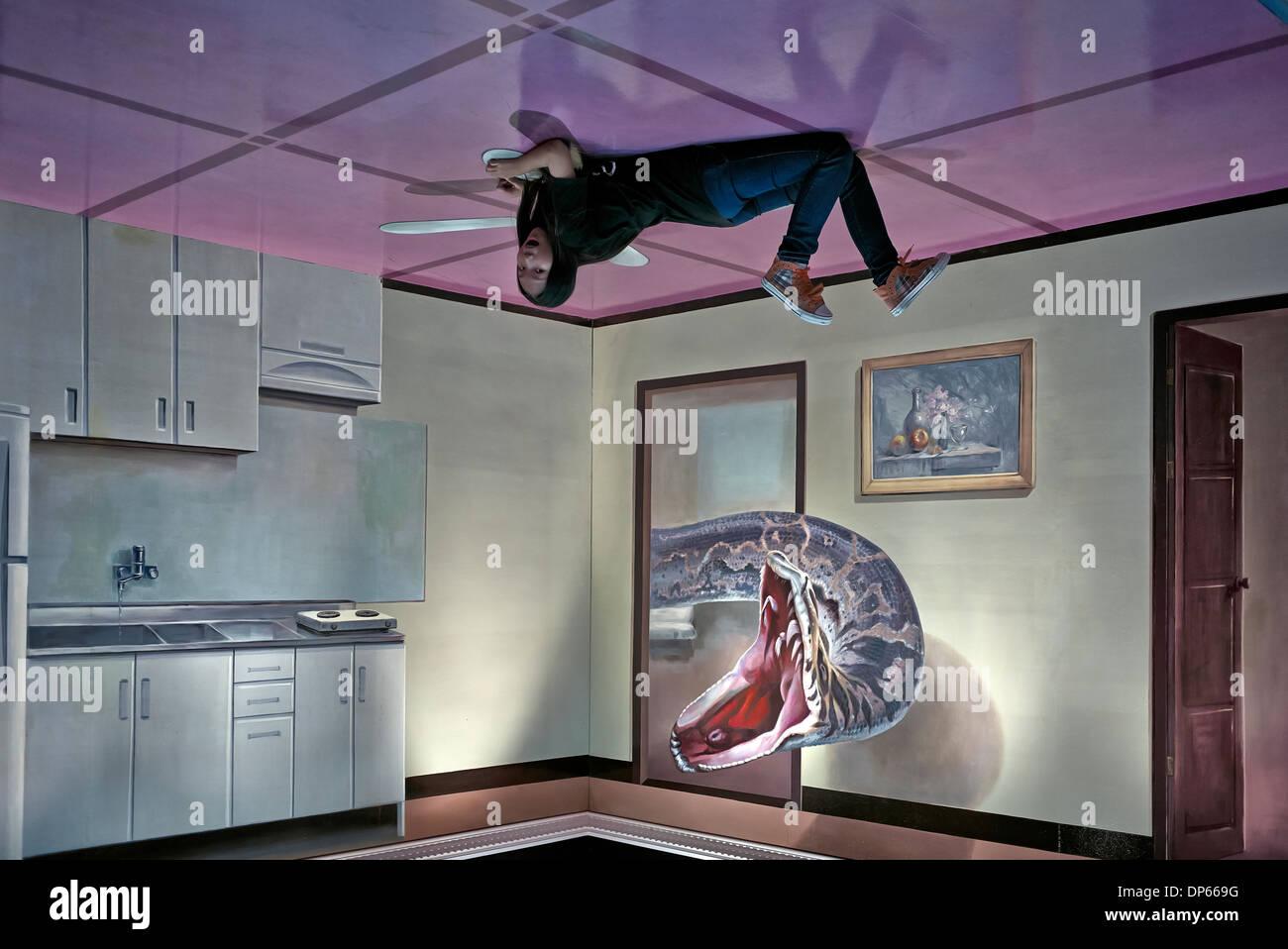 D Illusion Exhibition : Kunst und optische täuschung d malerei trick museum