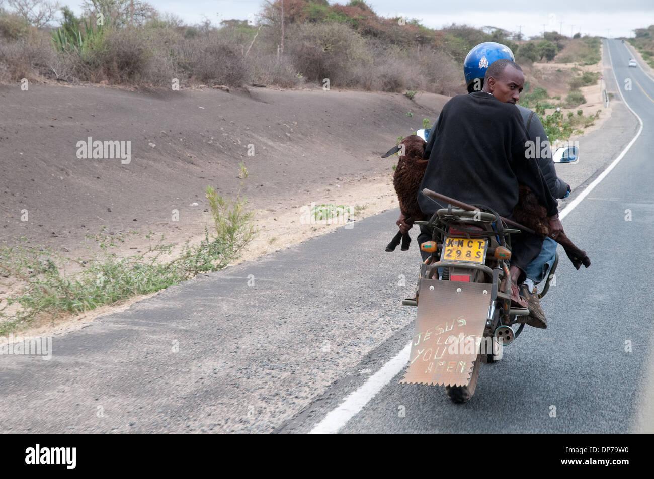 Motor Cycle-Taxi mit Kunden tragen eine Ziege auf Nairobi Namanga Straße südlich von Kajiado Kenia Afrika Stockfoto