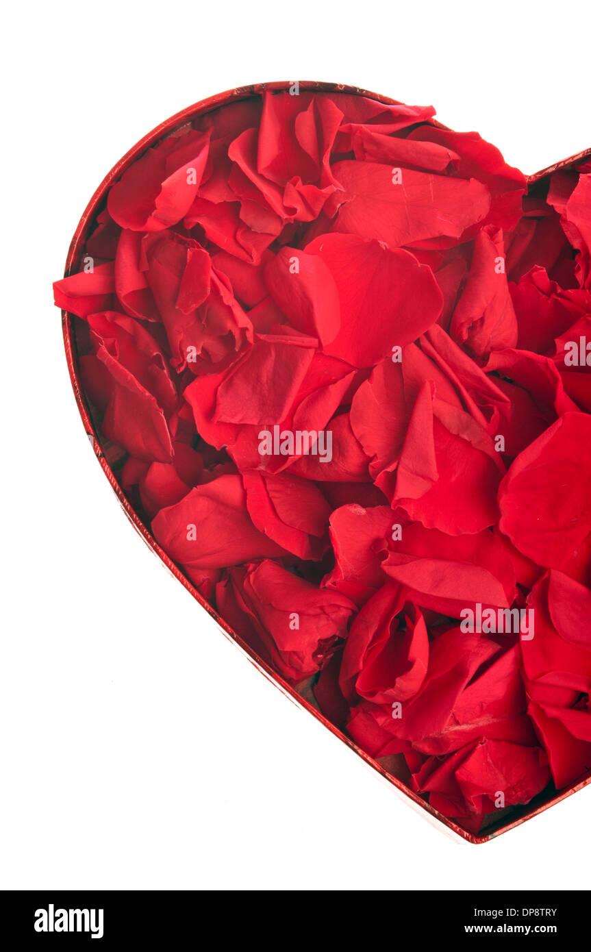 Valentine herzförmige Box mit roten Rosenblättern, liebe Konzept Stockfoto