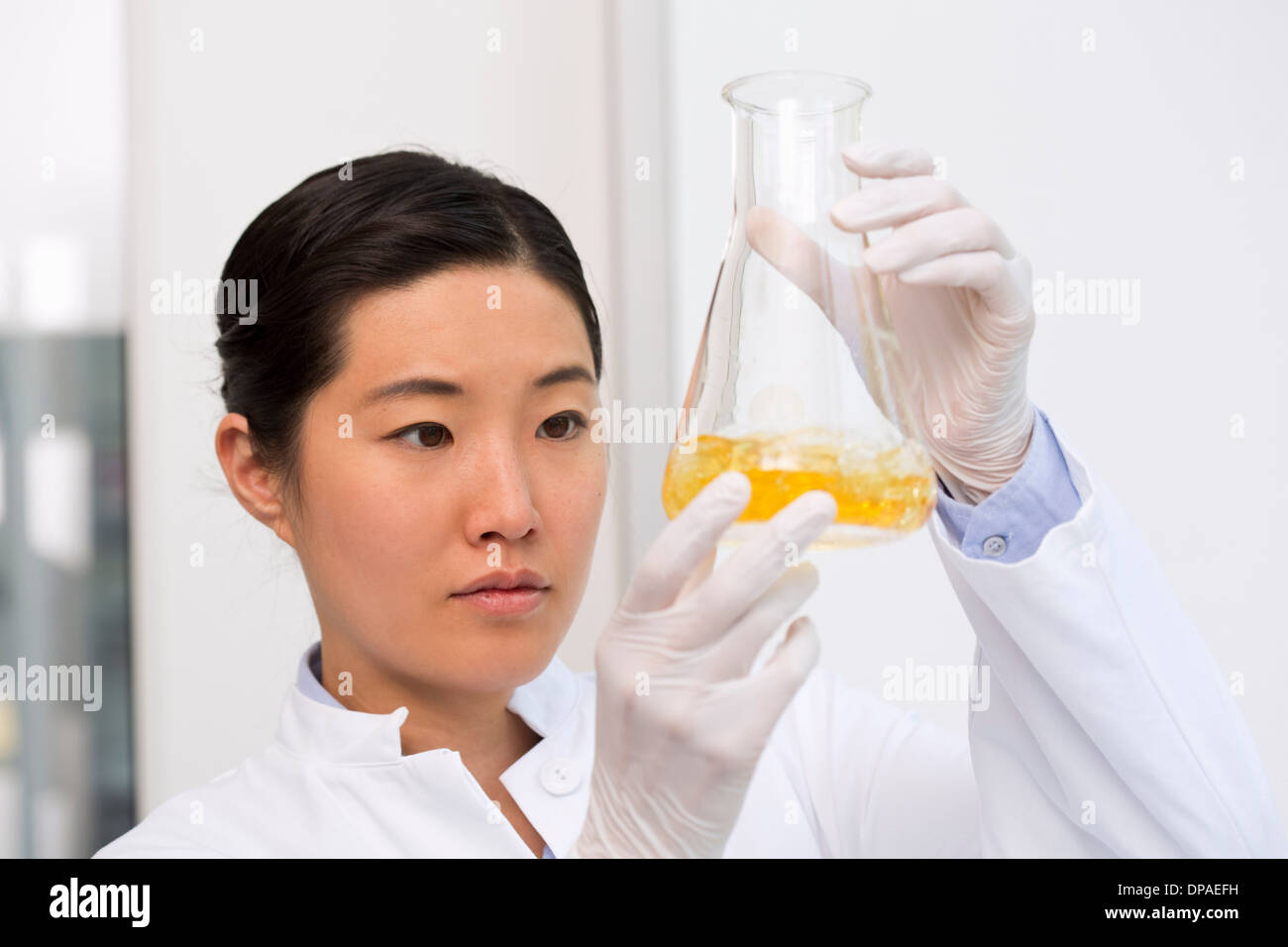 Weiblicher Wissenschaftler untersuchen Bakterienwachstum in Kolben mit LB (Lysogeny Brühe)-medium Stockfoto