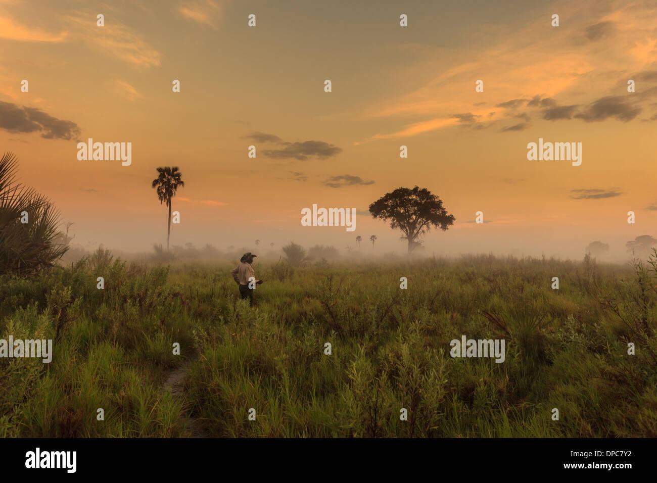 Safari Guide Studien Feuchtgebiete auf Anzeichen von Wildlife Touristen, Botswana, Afrika als Sonnenaufgänge und Nebel verbrennt zu zeigen Stockbild