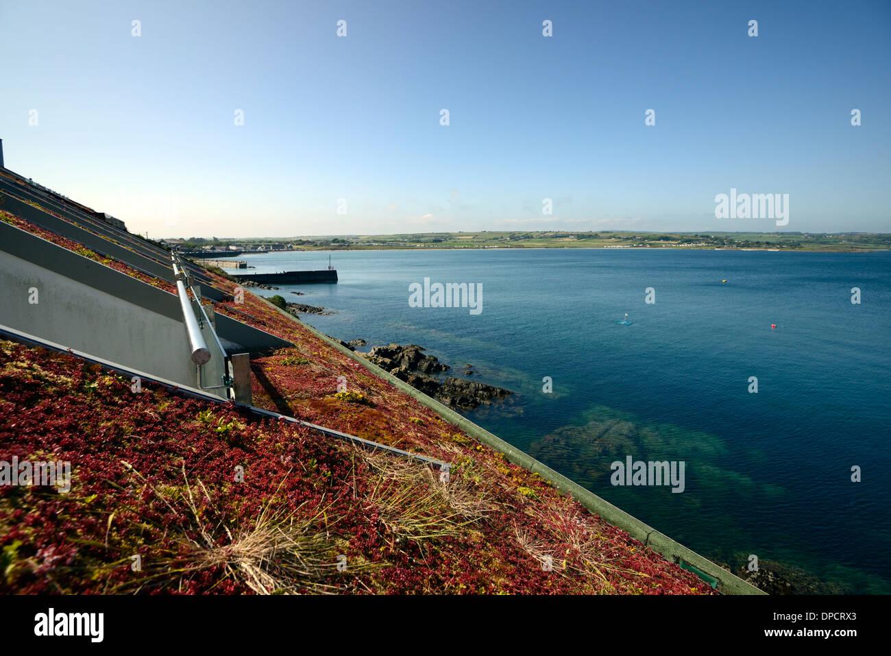 saftige live Leben Gründach Gebäude mit Blick auf Meer landschaftlich natürlich aussehende Mischung in die Umgebung einfügt Stockbild