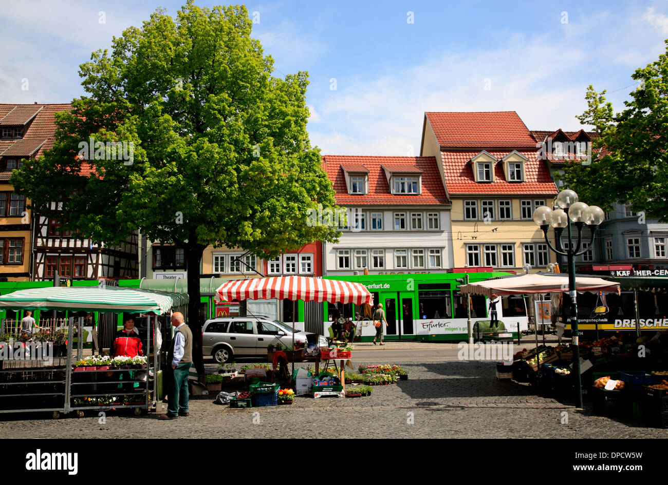 Markt am Domplatz, Domplatz, Erfurt, Thüringen, Deutschland, Europa Stockbild