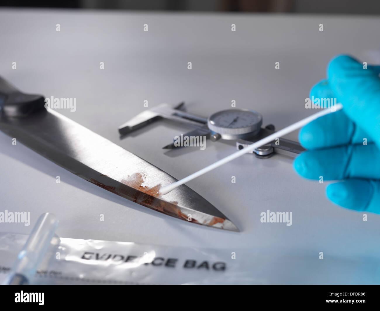 Forensische Untersuchung des Messers von Tatort Stockbild