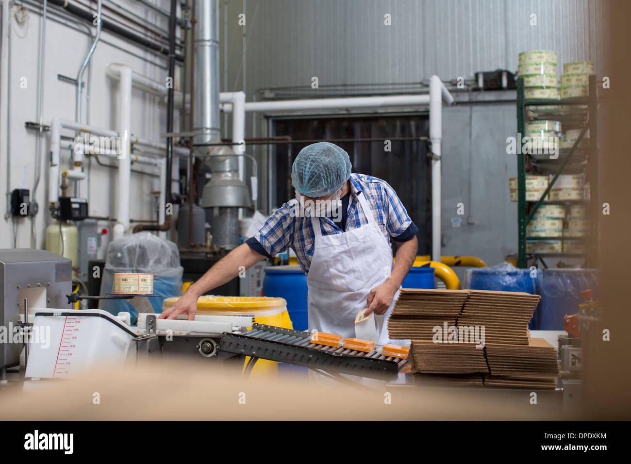 Mann Verpackung Vegan Käse im Lager Stockbild