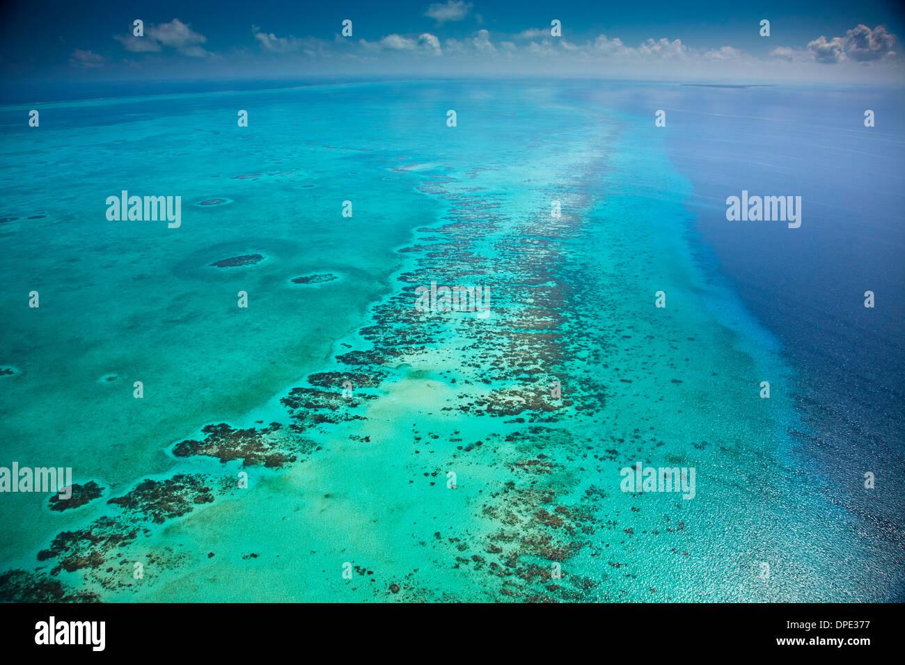 Riff Detail Belize Karibik Meso amerikanischen Reef Reserve Lighthouse Reef Atoll größte Riff in der westlichen Hemisphäre Luftbild Stockbild
