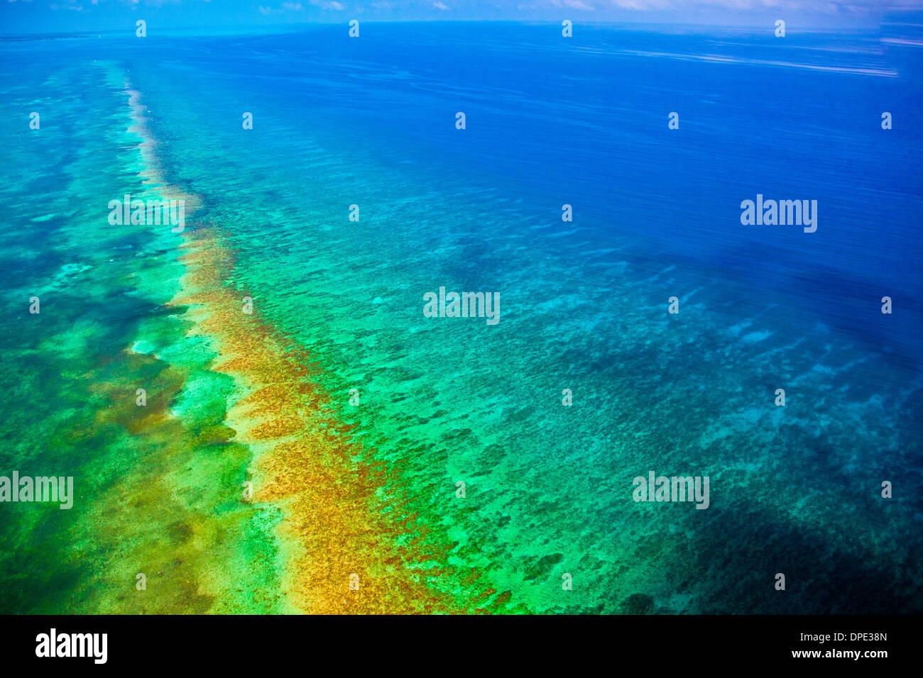 Riff Detail Belize Karibik Meso amerikanischen Reef Reserve Lighthouse Reef Atoll Luftbild Stockbild