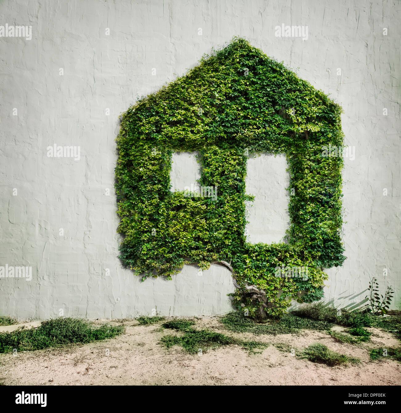 Efeu wächst in Form eines Hauses Stockbild