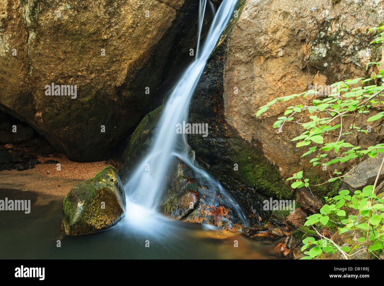 Felsen und Wasserfall, En Medio Fluss Santa Fe National Forest, New Mexico, USA Stockbild