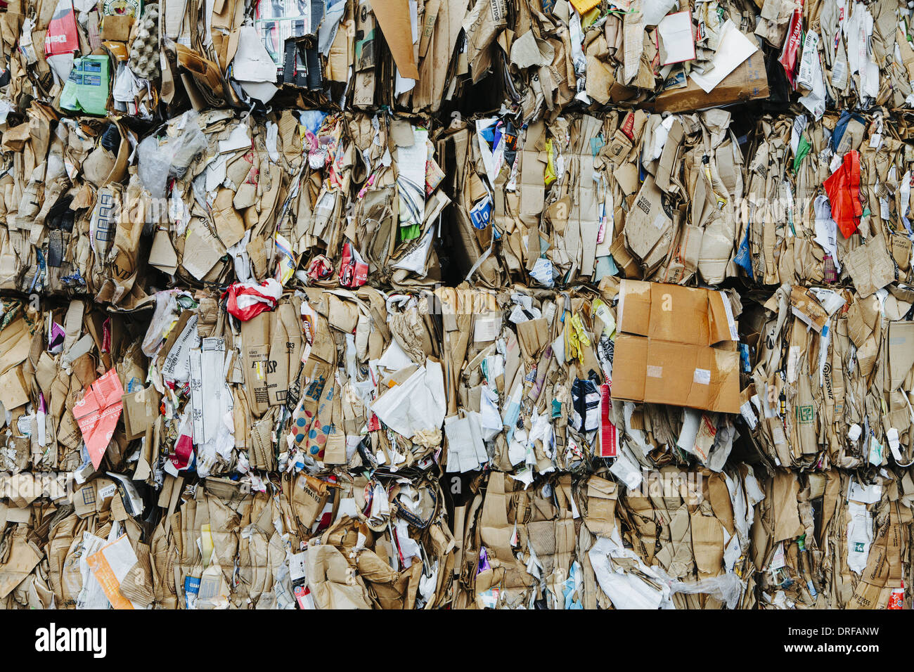 Washington State USA Recycling Anlage bündelt Pappe sortiert Stockbild