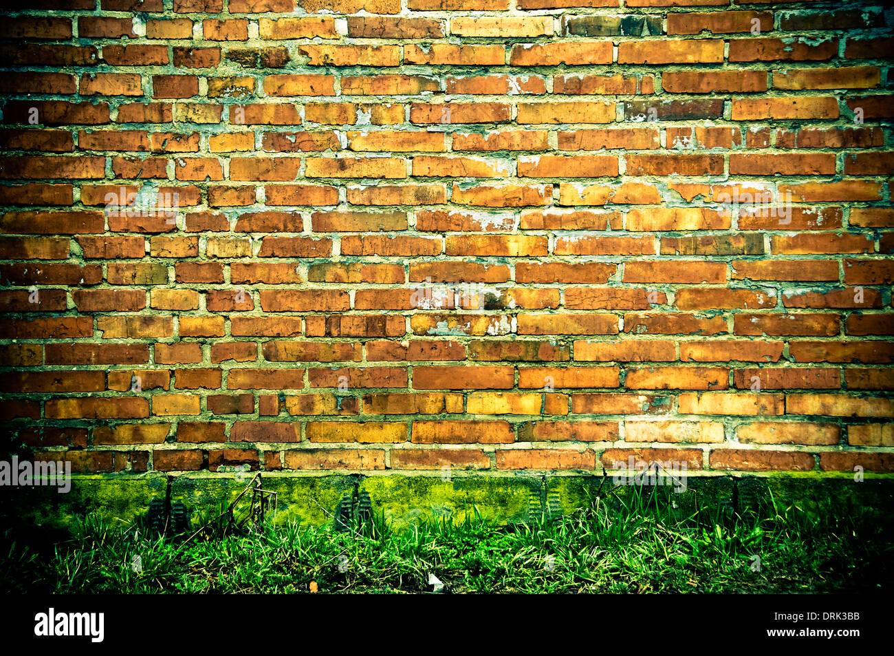 Ziegel-Wand Stockfoto