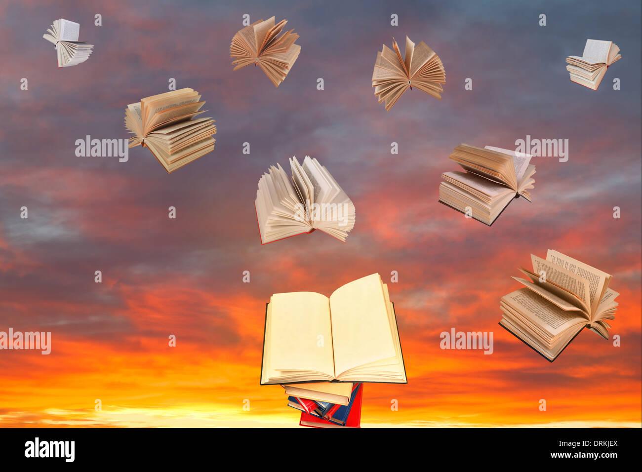 Witchcraft Books Stockfotos & Witchcraft Books Bilder - Alamy