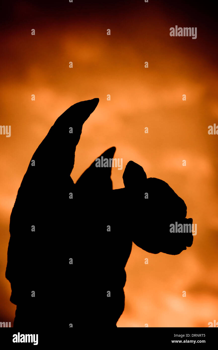 Silhouette einer Gargoyle-Statue Stockbild