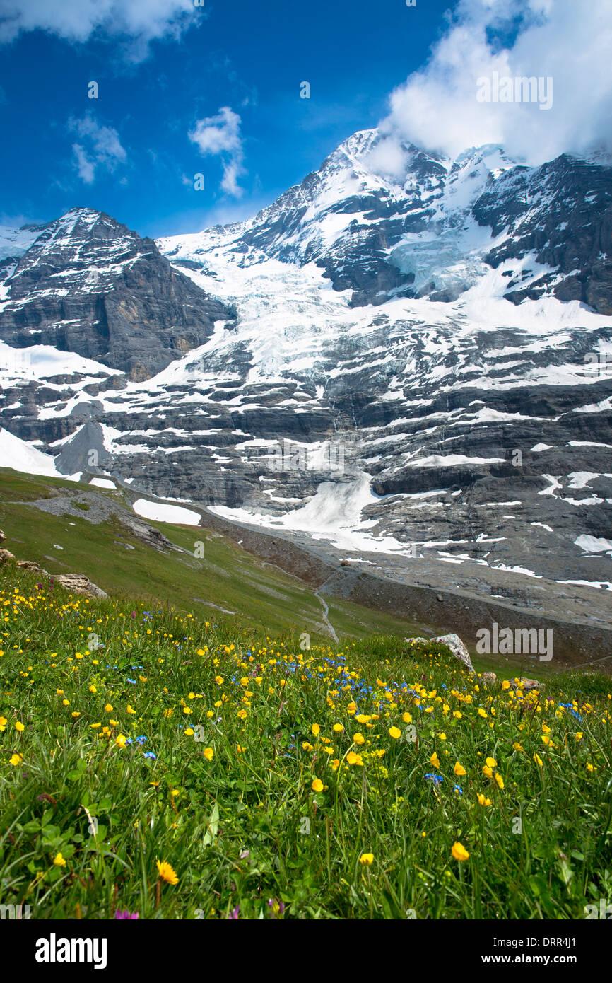 Eigergletscher, Eigergletscher, zwischen Monch (Mönch) und Eiger Berge in den Schweizer Alpen, Berner Oberland, Schweiz Stockbild