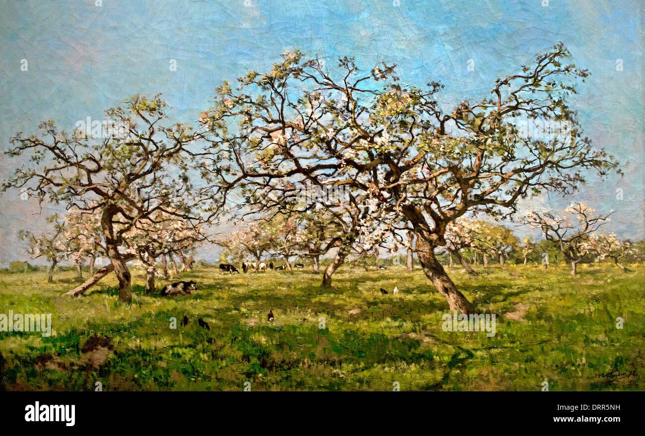 Obstgarten im Frühjahr 1879 Isidore Verheyden 1846-1905 flämischen Belgien Belgien Stockbild